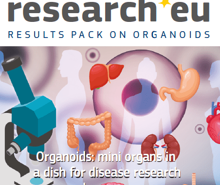 Organoids : Mini organs in a dish for disease research and new cures