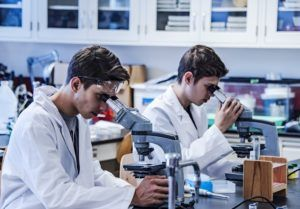 Laboratory research by two male scientists in laboratory using a microscope and laboratory glassware for scientific research