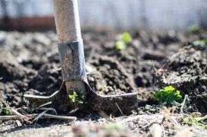agricultura-unión europea- PAC